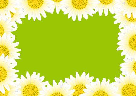 flower borders: White daisy frame Illustration