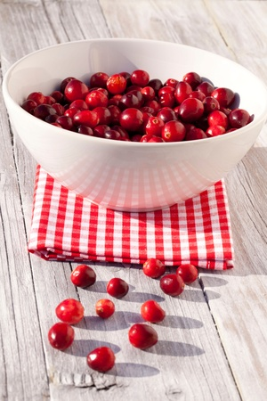 Cranberries in a bowl photo