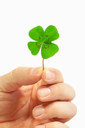 Clover Stock Photo - 12207623