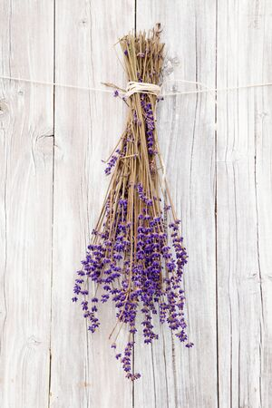white backing: Bunch of Lavender