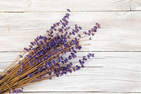 backing up: Lavender on wood