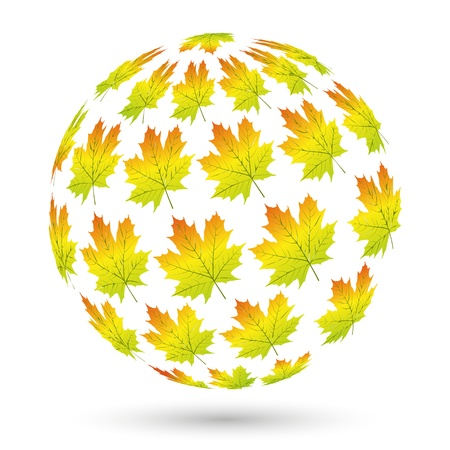 maple leaves as a ball Vector
