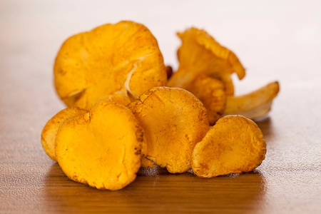Heap of Fresh Raw Chanterelle Mushrooms on wood photo