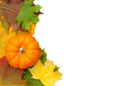 pumpkin border: Pumpkins on colorful autumn