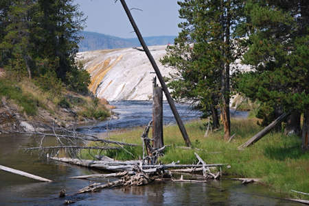 River at Yellowstone National Park, Wyoming Banco de Imagens