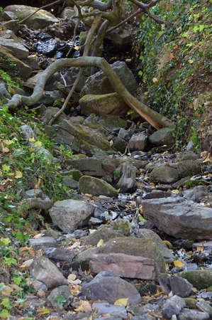 Suental in the Harz Mountains, Saxony - Anhalt Reklamní fotografie