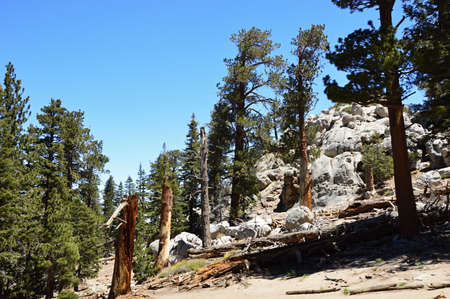 Mount San Jacinto, California