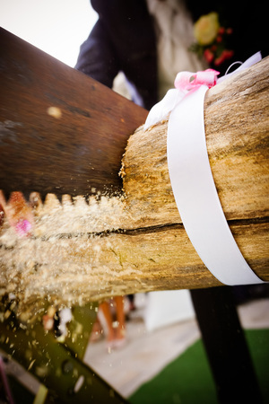 Bride and groom cutting wood log on wedding, The tree trunk is sawed by the bride and groom, with gloves Stock Photo