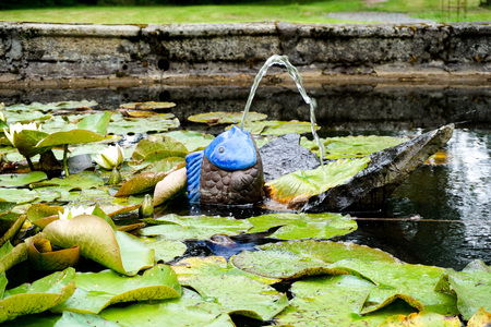 The small pond fountain in the form of a fish surrounded by water lilies, beautiful garden summertime Stock Photo