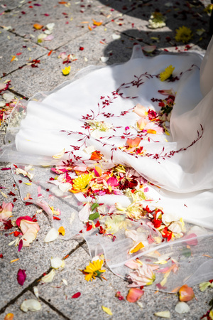 Wedding, petals lie on the bridal gown, fallen on the dress while scattering, flower girl