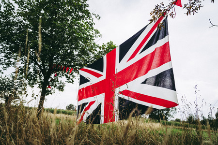 Union Jack flag stretched between trees, England in the forest