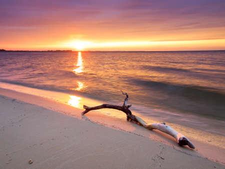 Melden Sie sich am Strand bei Sonnenuntergang