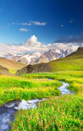champ vert: Rivi�re sur le champ vert