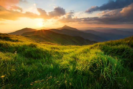 Grass on mountain hill during sundown. Beautiful summer landscape