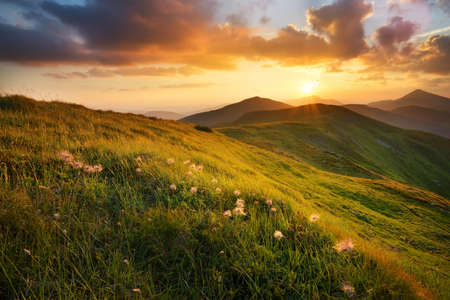 Mountain field during sunset. Beautiful natural landscape Фото со стока