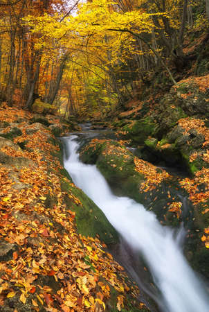 Waterfall in autumn canyon. Autumn landscape
