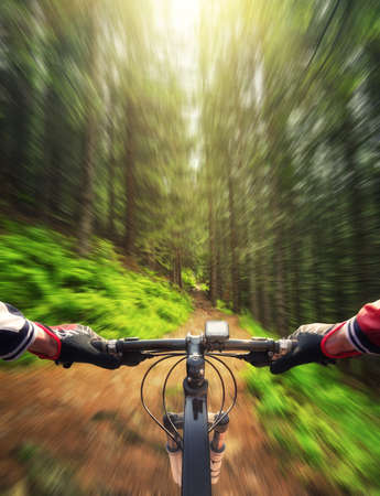 active life: Ride in summer forest. Sport and active life concept