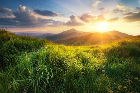 Mountain valley during sunset. Natural summer landscape Standard-Bild