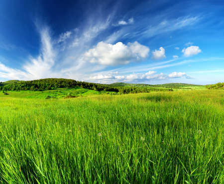 valley view: Green field and sky with clouds. Beautiful summer landscape