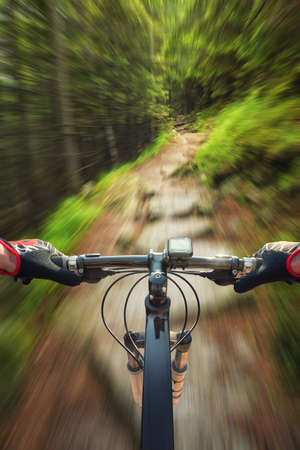 road cycling: Ride on bicycle on road in summer forest. Sport and active life concept Stock Photo