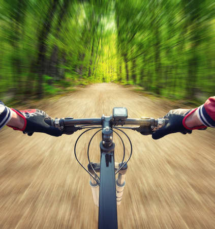 Fahren Sie mit dem Fahrrad auf der Straße im Sommer Wald. Sport und aktives Leben-Konzept