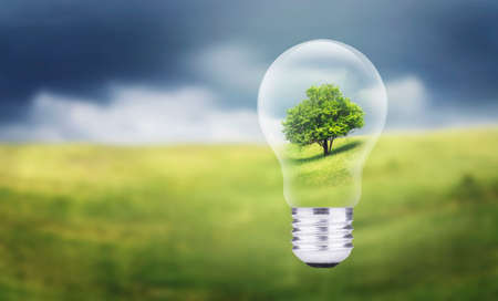 technological: Tree in electric lamp. Ecological energy concept Stock Photo
