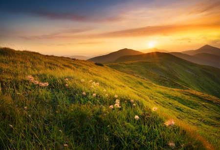 Mountain field during sunset. Beautiful natural landscape Standard-Bild