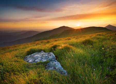 forest background: Bright sunset in mountain in summer time. Beautiful natural landscape
