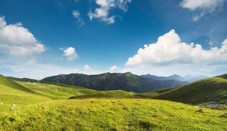 pasture: Pasture in mountain valley. Agriculture landscape Stock Photo
