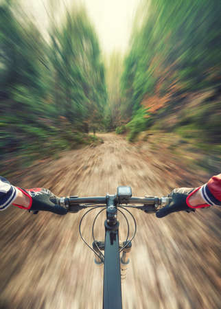 active life: Ride in the summer forest. Sport and active life concept