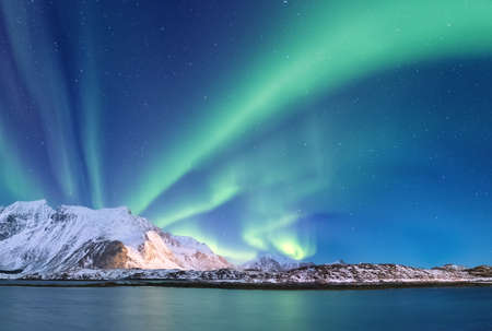 Northen light under mountains. Beautiful natural landscape in the Norway Фото со стока