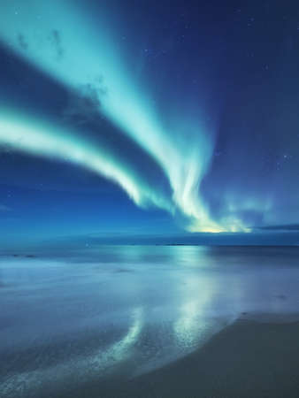 Aurora borealis on the Lofoten islands, Norway. Green northern lights above ocean. Night sky with polar lights. Night winter landscape with aurora and reflection on the water surface. Natural background in the Norway