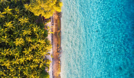 Aerial view at ocean and palms. Turquoise water background from top view. Summer seascape from air. Travel - image Banco de Imagens