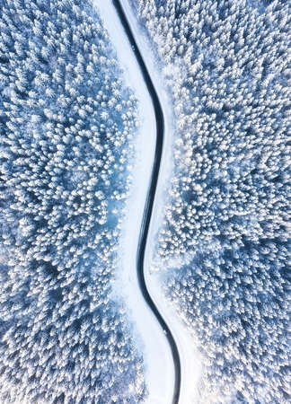 Natural winter landscape from air. Aerial view on the road and forest at the winter time. Forest under snow. Winter travel - image Banco de Imagens