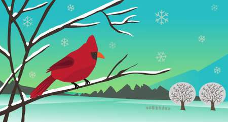 country side: winter cardinal - Winter landscape of a bird sitting on a tree branch  Eps10