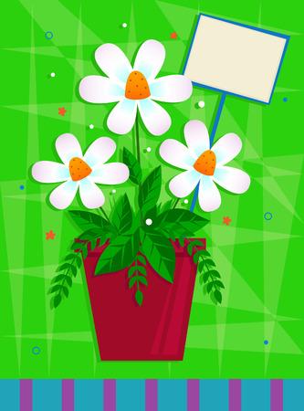 흰색 꽃 - 녹색 장식 배경 앞의 빨간 냄비에 흰색 꽃. Eps10