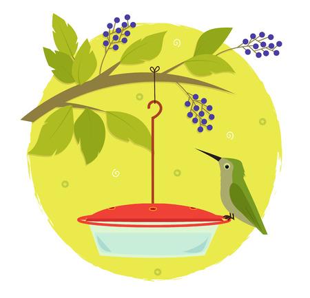feeder: Hummingbird and Feeder - Cute clip art of hummingbird standing on a hummingbird feeder. Eps10