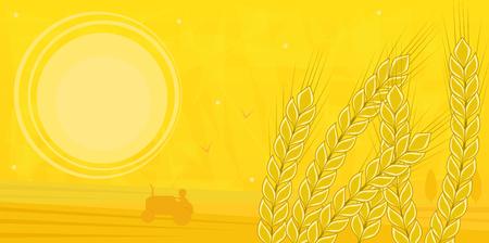 夏 - フィールドと小麦の在庫でトラクターを運転してフォア グラウンドで農家のシルエットのフィールドです。