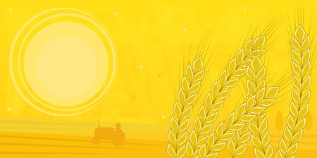 foreground: Field in Summer - Silhouette of a farmer driving a tractor in the field and stock of wheat in the foreground.