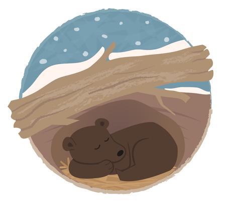 Clip art of a bear sleeping in his den.