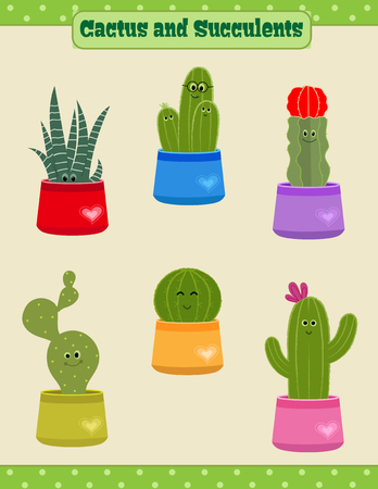 Cute set of six potted cactus and succulents plants.