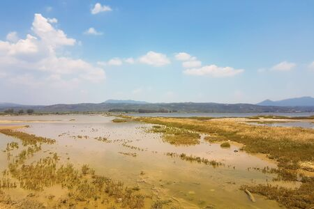 Wetland in South Peloponnese in Greece.