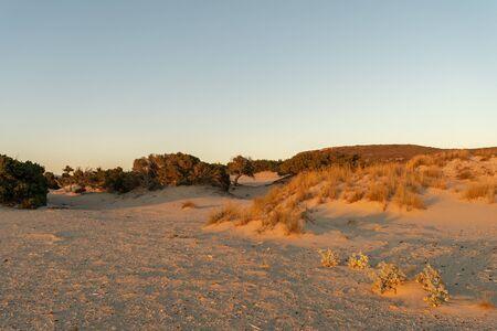 Simos beach in Greece during golden hour.