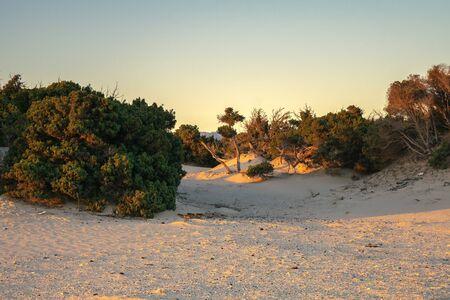 Simos beach in Elafonisos in Greece. 스톡 콘텐츠