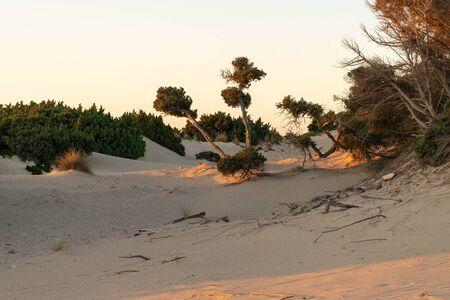 Simos beach in Elafonisos. A famous touristic destination.