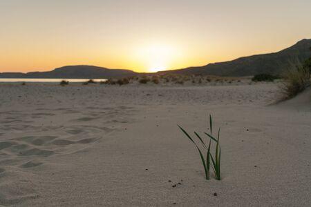 Landscape at Elafonisos in Greece. Simos beach.
