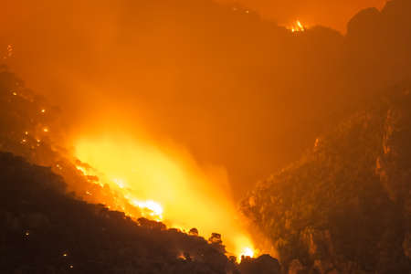Close up look of a fire at a forest in Loutraki in Greece.