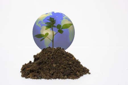 gaia: Plant world.