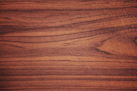 Wood grain. photo