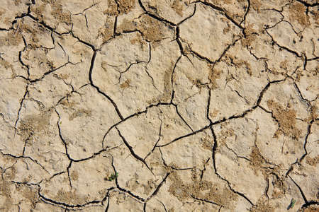 Ground the drought to global warming. Stock Photo - 11891871